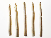 Asperge - Asparagus