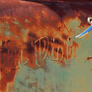 Heavy Rusted Truck Door - Motor Transport Museum - Campo, CA