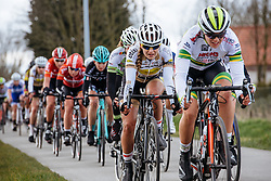 Peloton are chasing back to the leaders but is it too late?- Dwars door Vlaanderen 2016, a 103km road race from Tielt to Waregem, on March 23rd, 2016 in Flanders, Netherlands.