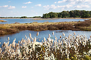 """Chincoteague Island, Maryland<br /> <br /> For IMAGE LICENSING information, click on """"PURCHASE"""" button above, then click """"DOWNLOADS INFO"""", or contact the artist.<br /> <br /> Fine Art archival paper prints for this image as well as canvas, metal and acrylic prints available here: https:"""