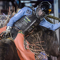 Sage Kimzey makes his first qualified ride of the night on his way to winning the CBR Bullriding event Wednesday in Window Rock.