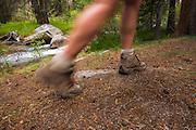 Hiker's legs blurred on trail, John Muir Wilderness, Sierra Nevada Mountains, California USA