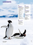 Adelie penguins published in NG Traveler Magazine Korean edition.