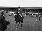 "07/08/1980<br /> 08/07/1980<br /> 07 August 1980<br /> R.D.S. Horse Show: John Player Top Score Competition, Ballsbridge, Dublin.  Harvey Smith (Great Britain) winner, on ""Sanyo Music Centre""."
