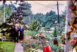 Look residence, Caroline St. Peking IL 1959 <br /> <br /> Believe persons in photo are George Look and mother Alice Look<br /> <br />  Photos taken by George Look.  Image started as a color slide.