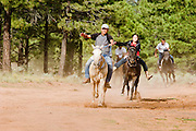 """09 SEPTEMBER 2007 -- ST. MICHAELS, AZ: Racers approach the finish line at a traditional Navajo Horse Race in the summit area of the Navajo Indian reservation about 10 miles west of St. Michaels, AZ. Traditional horse racing is making a comeback on the Navajo reservation. The races are run on improvised courses that vary depending on the local terrain. Use of saddles is optional (except in the """"Cowhand Race"""" which requires a western style saddle) and many jockeys ride bareback. The distances vary from one mile to as long as thirty miles. Traditional horse races were common until the 1950's when they fell out of favor, but there has been a resurgence in traditional racing since the late 1990's and now there is a traditional horse racing circuit on the reservation. The race was organized by the Begay family of Steamboat, AZ and run on private land about three miles from a paved road.  Photo by Jack Kurtz"""