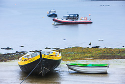 Boats in harbor at low tide, Kinvarra, County Galway, Ireland