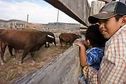 08 SEPTEMBER 2007 -- FT. DEFIANCE, AZ: Navajo children look at the bucking bulls at the All Women Rodeo in the Dahozy Stampede Rodeo Arena in Ft. Defiance, AZ, on the Navajo Indian Reservation. It was the first all women's rodeo on the Navajo Indian Reservation.  Photo by Jack Kurtz/ZUMA Press