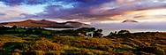 Photographer: Chris Hill, Nephin Beg, Beltra Lough, County Mayo