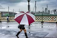 Rainy day in Sydney Australia