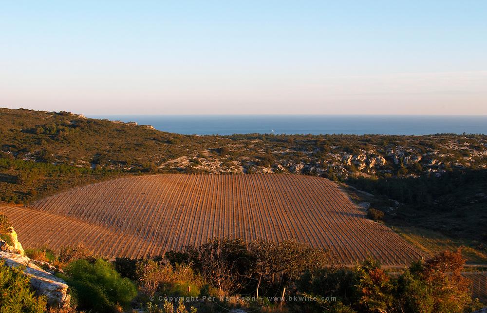 Domaine Gerard Bertrand, Chateau l'Hospitalet. La Clape. Languedoc. The vineyard. France. Europe.
