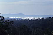 1991: View across Primary rainforest canopy. Belaga region, Sarawak, Borneo<br /> <br /> Tropical rainforest and one of the world's richest, oldest eco-systems, flora and fauna, under threat from development, logging and deforestation. Home to indigenous Dayak native tribal peoples, farming by slash and burn cultivation, fishing and hunting wild boar. Home to the Penan, traditional nomadic hunter-gatherers, of whom only one thousand survive, eating roots, and hunting wild animals with blowpipes. Animists, Christians, they still practice traditional medicine from herbs and plants. Native people have mounted protests and blockades against logging concessions, many have been arrested and imprisoned.