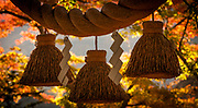 Entrance to Shinto shrine, autumn in Gokayama World Heritage village, Japan.