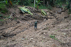 """Hector Hermilo Perdomo, COCASJOL, Colinas, Santa Bárbara, Honduras. """"With the two hurricanes that hit Honduras, the water that fell with them has affected us very much. We've had landslides, lots of land has been wiped out, taking with it our crops. Just in my bit of land I've lost two manzanas (5 acres) that means 7000 coffee plants that I've lost, that I can't recover. Also the production of those 7000 plants, that's about 35 quintals of dry pergamino coffee that I've lost. All this means I'm in difficulties financially, it's a big loss. Also I've lost the musacea, the bananas we plant alongside the coffee as shade, and we have a substantial trade of bananas to Guatemala, mainly the small banana we call 'mínimo', we've lost that too. We've got big difficulties with access to and from our farms here, after the main roads and minor roads were affected by landslides, and that has made it hard to get any product out to market, or get machinery in to fix things on our farms. I've had 14 small landslides, and two big ones on my own property."""""""