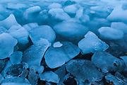 Icebergs, calved by nearby Hansbreen, line the coast in Hornsund, Svalbard.