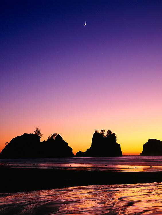 Shi Shi Beach at Twilight, Pacific Coast, Olympic National Park, Washington, USA
