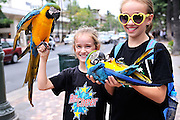 two girls (8 years old, 11 years old) holding Blue-and-yellow Macaws (Ara ararauna), also known as the Blue-and-gold Macaw. Waikiki, Hawaii