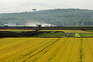 Goshen, New York - A crop duster flies over a black dirt fields on May 21, 2011. Herbicide is sprayed to kill the barley, which was planted with onions in the field to shield the onions from the wind. The barley grows faster but then has to be killed.
