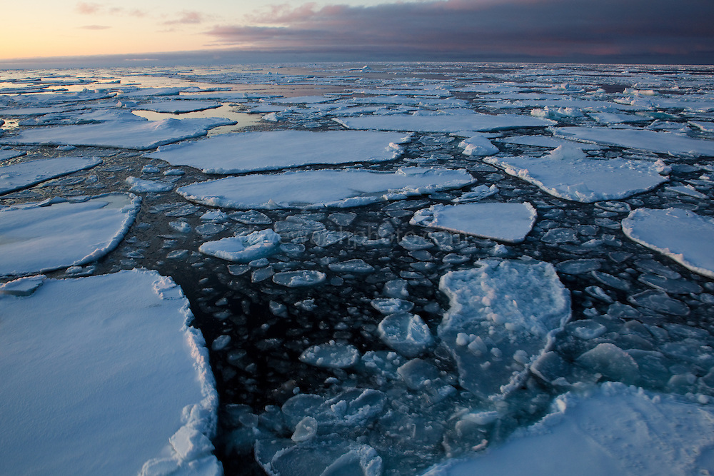 """Pancake Ice and floes - on Arctic Sea Ice, Fram Strait, between Greenland and Svalbard, September 2009. In August 2012, Arctic sea ice hit a record minimum - this will affect weather and the global climate, as the ice cap reflects much of the sun's solar energy back into to space. With sea ice melting away, the dark water below absorbs more solar energy, which in turn causes more melting. This mage can be licensed via Millennium Images. Contact me for more details, or email mail@milim.com For prints, contact me, or click """"add to cart"""" to some standard print options."""