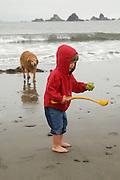 A toddler and golden retriever play on the beach near Crescent City, California