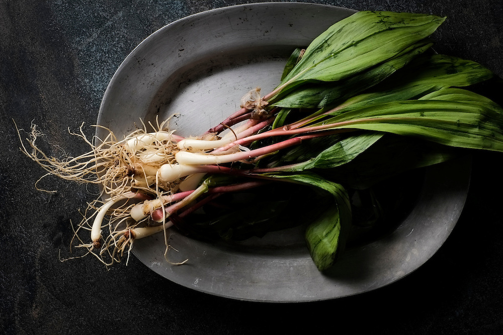 A bunch of ramps on metal platter on dark surface.