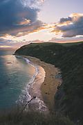 Bushy beach at Oamaru - Yellow-eyed penguin breeding site