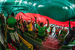 Lithuanian fans under the flag during basketball match between National teams of Ukraina and Lithuania in 2nd Round at Day 12 of Eurobasket 2013 on September 14, 2013 in SRC Stozice, Ljubljana, Slovenia. (Photo By Urban Urbanc / Sportida)