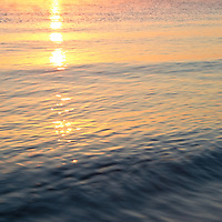 Sunrise reflected in the waters of the Chesapeake Bay just offshore from the beach at Calvert Cliffs State Park, Lusby, Maryland