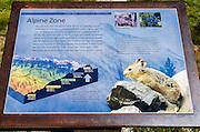Interpretive sign on Tioga Pass, Tuolumne Meadows, Yosemite National Park, California USA