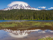 Mt. Rainier National Park.  Mt. Rainier Reflected in the Waters of Reflection Lakes