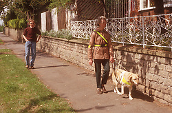 Dog trainer walking along pavement behind woman with visual impairment and guide dog,
