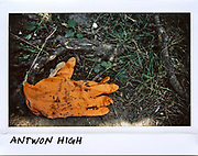 A paramedic's glove is seen on the ground at 200 block of South Hoyne Avenue in Chicago where Antwon High, 26-year-old, was shot in this photo taken June 21, 2017. High died from a gunshot wound to the chest on June 20, 2017.