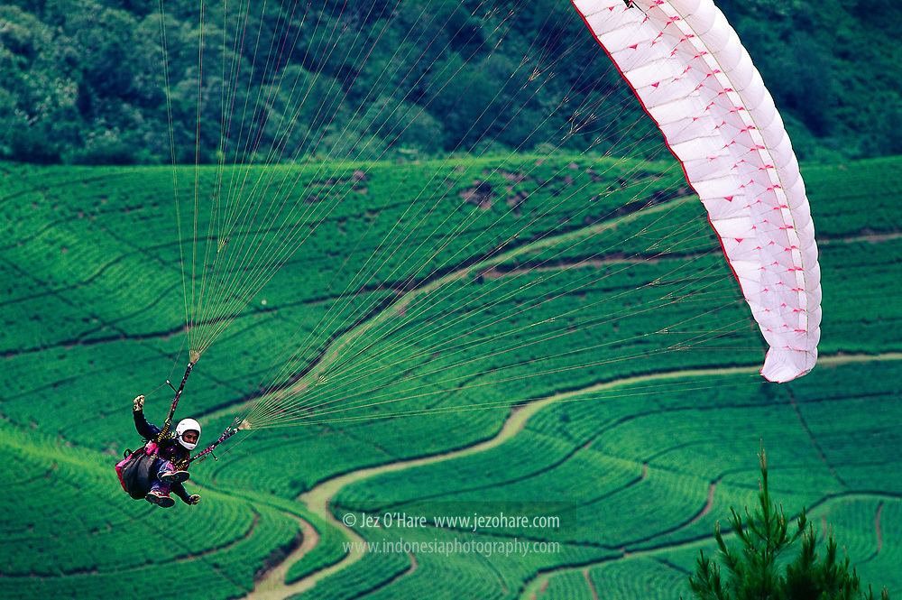 Paraglider (Pilot: Bima) at Puncak, Bogor, West Java, Indonesia.
