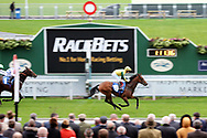 CAPTAIN JAMESON (19) ridden by Jason Hart and trained by John Quinn winning The Irish Thoroughbred Marketing Handicap Stakes over 6f (£16,600)   during the Countryside Raceday, October Finale at York Racecourse, York, United Kingdom on 12 October 2018. Pic Mick Atkins