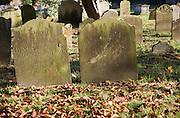 Weathered old headstones graveyard of village parish church of Reydon, Suffolk, EnglandSuffolk, England, UK