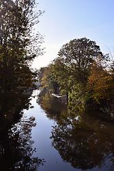 Autumn colours, River Wensum, Norwich UK November 2019