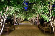Garden, Hi Rez 329 Highland Terrrace, Hi Rez  Bridgehampton Edited HI Rez