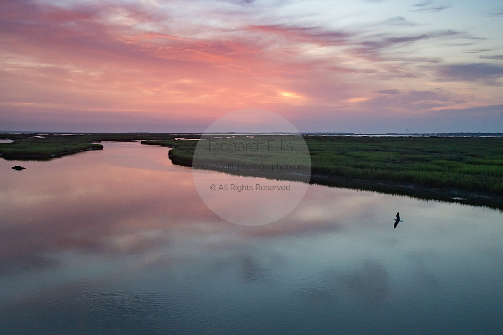 A seagull flies over the tidal salt marshes of the Cape Romain National Wildlife Refuge at sunrise near Charleston, South Carolina. The 66,287 acre National Wildlife Refuge encompass water impoundments, creeks, bays, emergent salt marsh and barrier islands most of which is only accessible by boat.