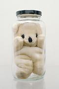 Stuffed bear in glass jar