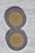 Ten New Israeli Shekel coin