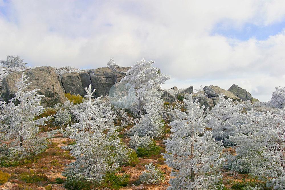 Sierra Cebollera en invierno. La Rioja ©Daniel Acevedo / PILAR REVILLA