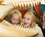 27/11/2016 REPRO FREE:  Annabelle O'Dea (9) and Erin O'Connor (9) at the Atlantiquarium  Stand inNUI Galway as part of the Galway Science & Technology Festival.<br /> Photo: Andrew Downes, Xposure.