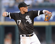 CHICAGO - JULY 24:  Ryan Goins #17 of the Chicago White Sox fields against the Miami Marlins on July 24, 2019 at Guaranteed Rate Field in Chicago, Illinois.  (Photo by Ron Vesely)  Subject:   Ryan Goins