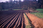 AE2BXD Furrows for planting potato crop Butley Suffolk England