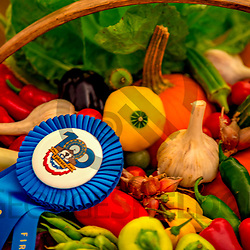 Ephrata, PA, USA - September 28, 2018: Agriculture award winning entries of locally grown vegetables are on display at the annual late summer street fair.