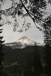Grossglockner peak seen through tree branches, Austria Alps, Carinthia,  Austria