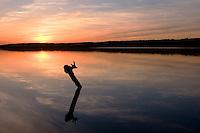 Saganashkee Slough at Sunset, Willowbrook, Illinois
