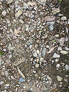 Cornwall, New York - Loose stones on the Trestle Trail during a Schunnemunk Mountain hike on May 28, 2018.