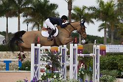 McCrea Christine (USA) - Avenir<br /> Horseware GP CSI 2*<br /> Wellington 2012<br /> © Hippo Foto - Cealy Tetly