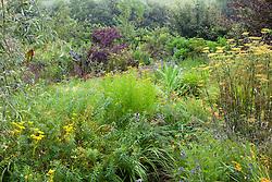 The brick garden at Glebe Cottage in August